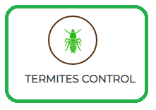 Cockroaches Control Services
